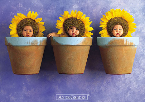 anne geddes sucks