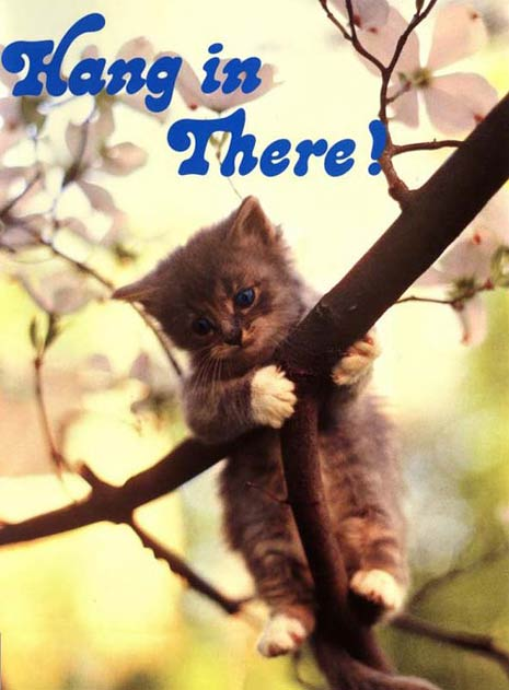 hang in there baby poster